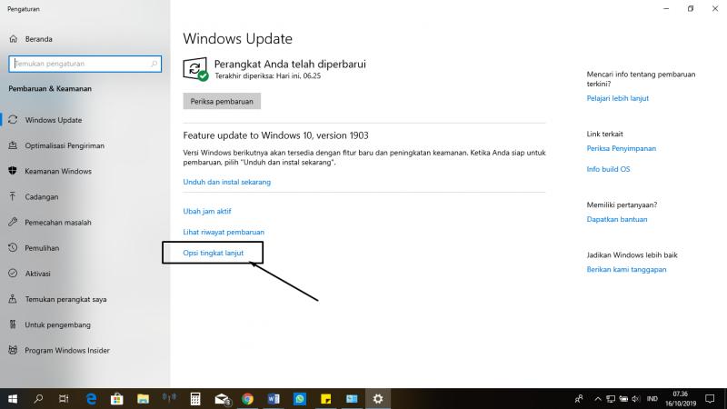 Windows update options