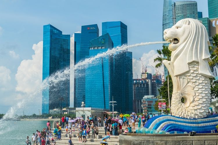 Identitas Negara Singapura