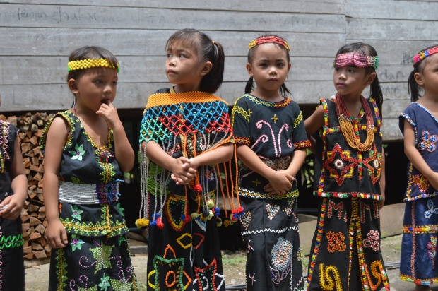 Kebudayaan Kalimantan Utara, Rumah, Pakaian, Kesenian ...