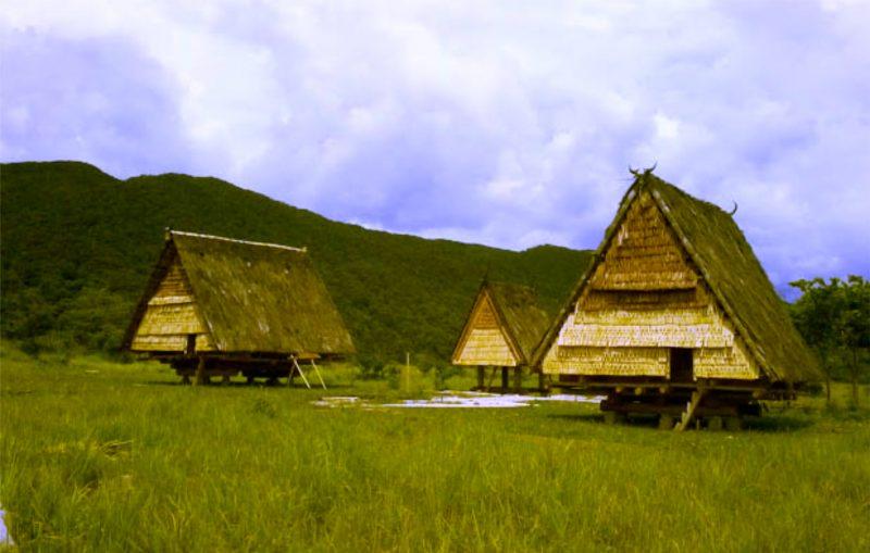 Rumah Adat Tambi kebudayaan sulawesi tengah