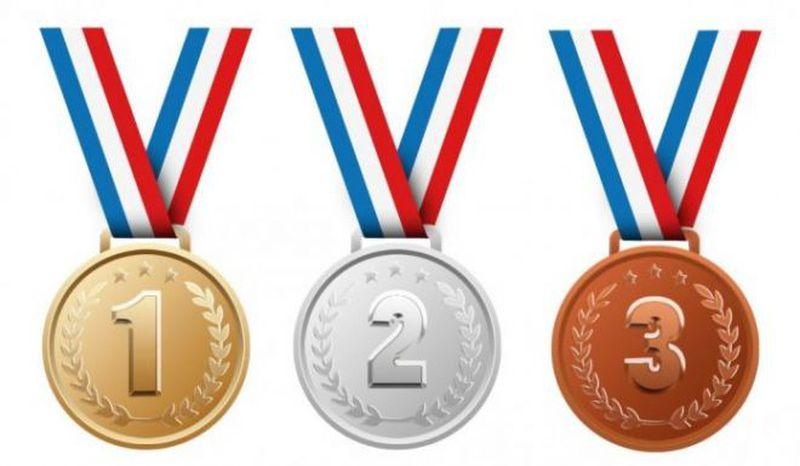 Medali kerajinan bahan keras